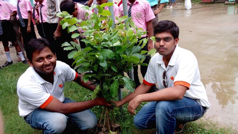We plan to plant one sapling for every app
