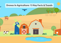 An analysis of the use of drones in agriculture