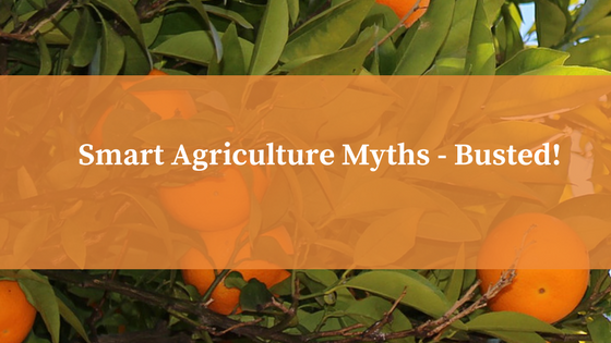 The facts behind the biggest modern farming myths